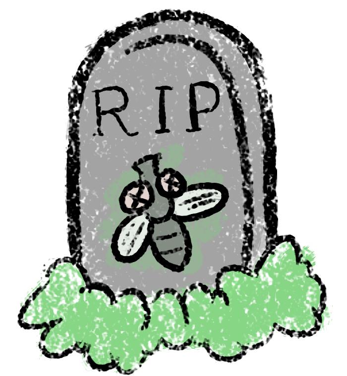9eaeaf4d1a2fe3995533399be1827873_i-slapped-a-fly-dead-flies-clipart_700-759
