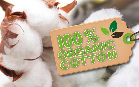 organic-cotton-bio-baumwolle-2-580px