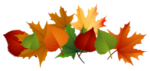 fall-leaves-fall-leaf-clipart-no-background-free-clipart-images