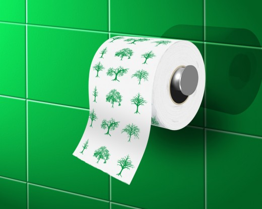 eco-bathroom-toilet-paper-520x416